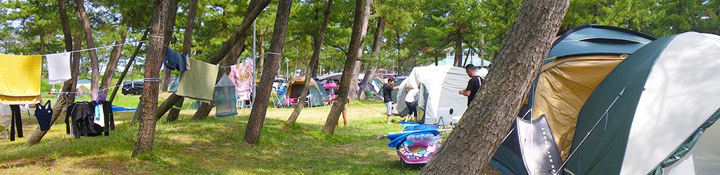 image-camp